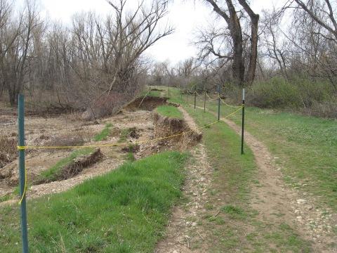 sawmill ponds