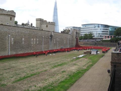 poppy memorial
