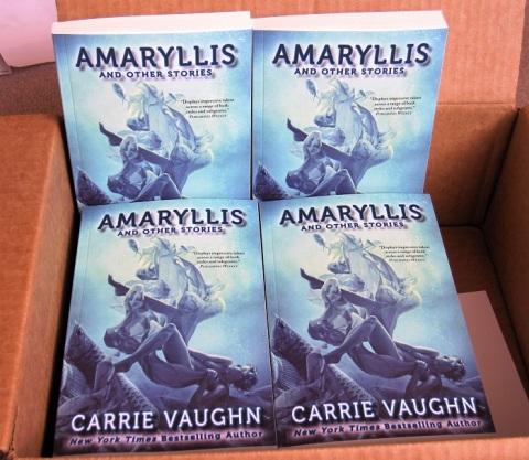 amaryllis box